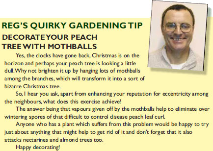 Reg's Gardening Tips fpr November & December